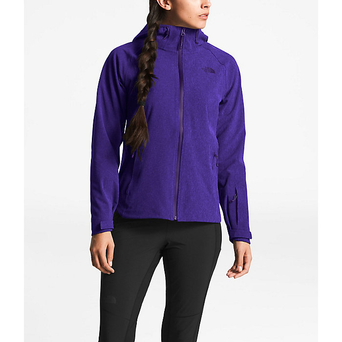 The North Face Women's Apex Flex Gtx Jacket by The North Face