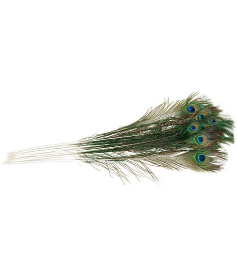 Peacock Eye Feathers-12PK/Natural