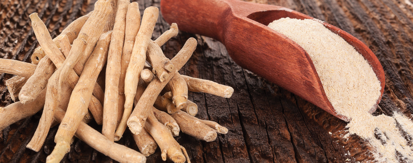 Examples of Adaptogens