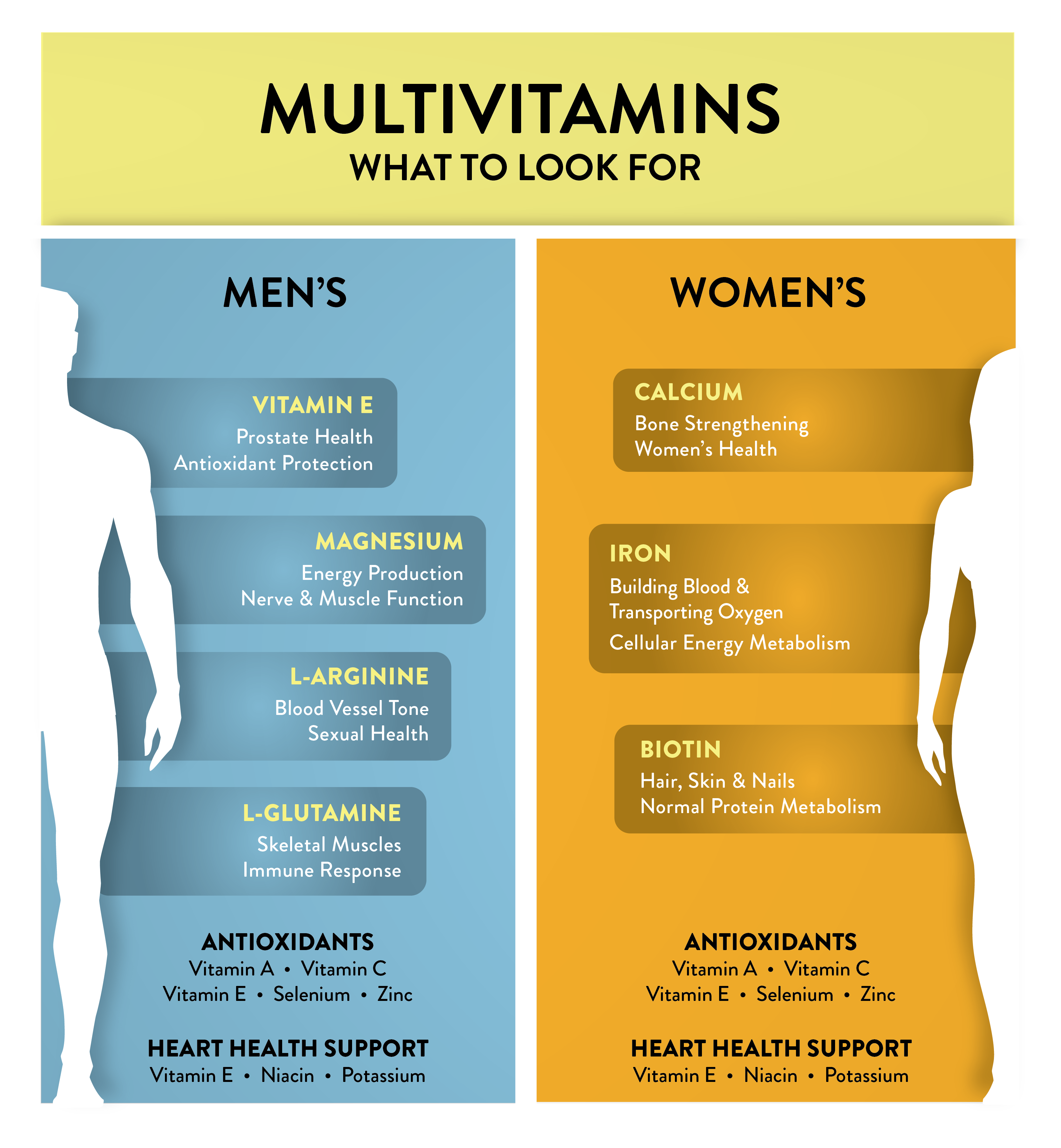 Comparison Chart showing Differences Between Men's vs. Women's Multivitamins